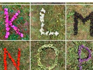 A-Z Natural themed alphabet, Capitals
