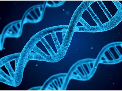 AQA Combined science GCSE Biology Topics 1-4 (B1-B9)