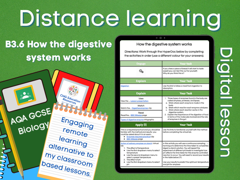SB3.6 How the digestive system works: Distance learning (AQA GCSE Biology)