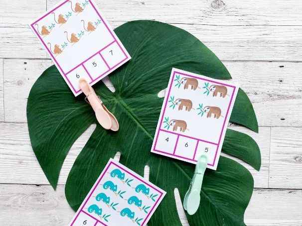 Animal Count and Match Cards