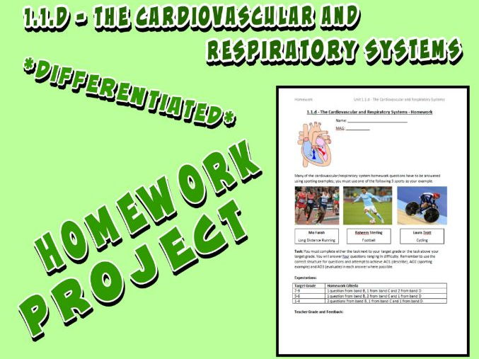 ccea ict gcse coursework