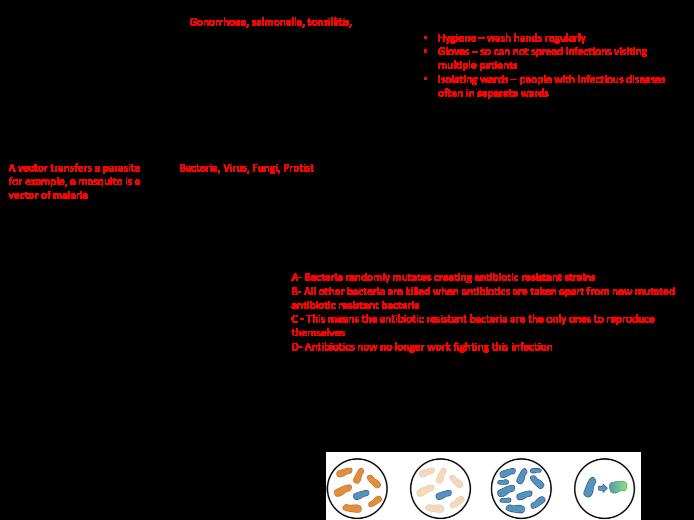 AQA GCSE 9-1 B5 Communicable Disease Revision Mat