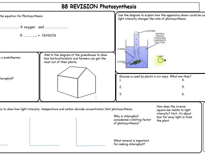 Photosynthesis revision mat by ilanaf teaching resources tes cover image ccuart Images
