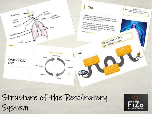 BTEC Sport L3 - Structure of Respiratory System