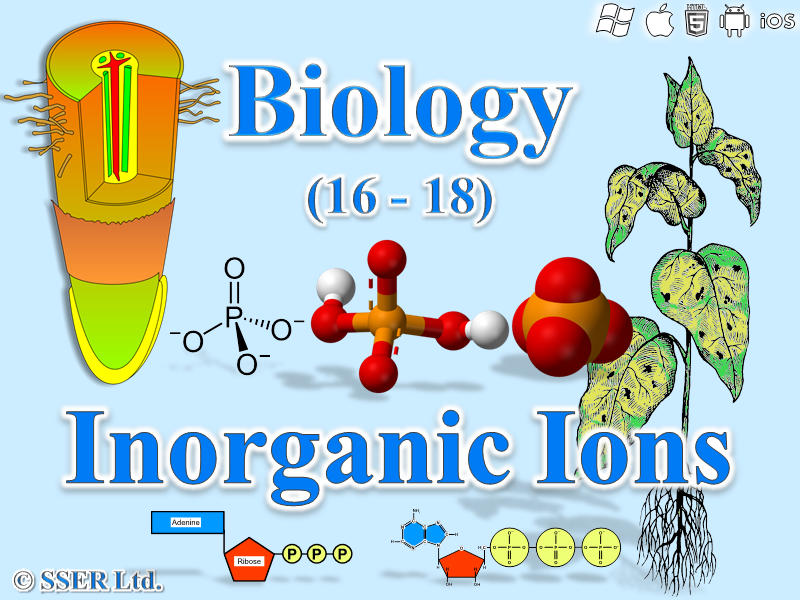 3.1.8 Inorganic Ions