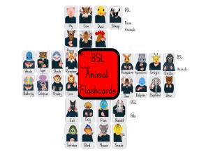 31 British Sign Language, animal, flashcards