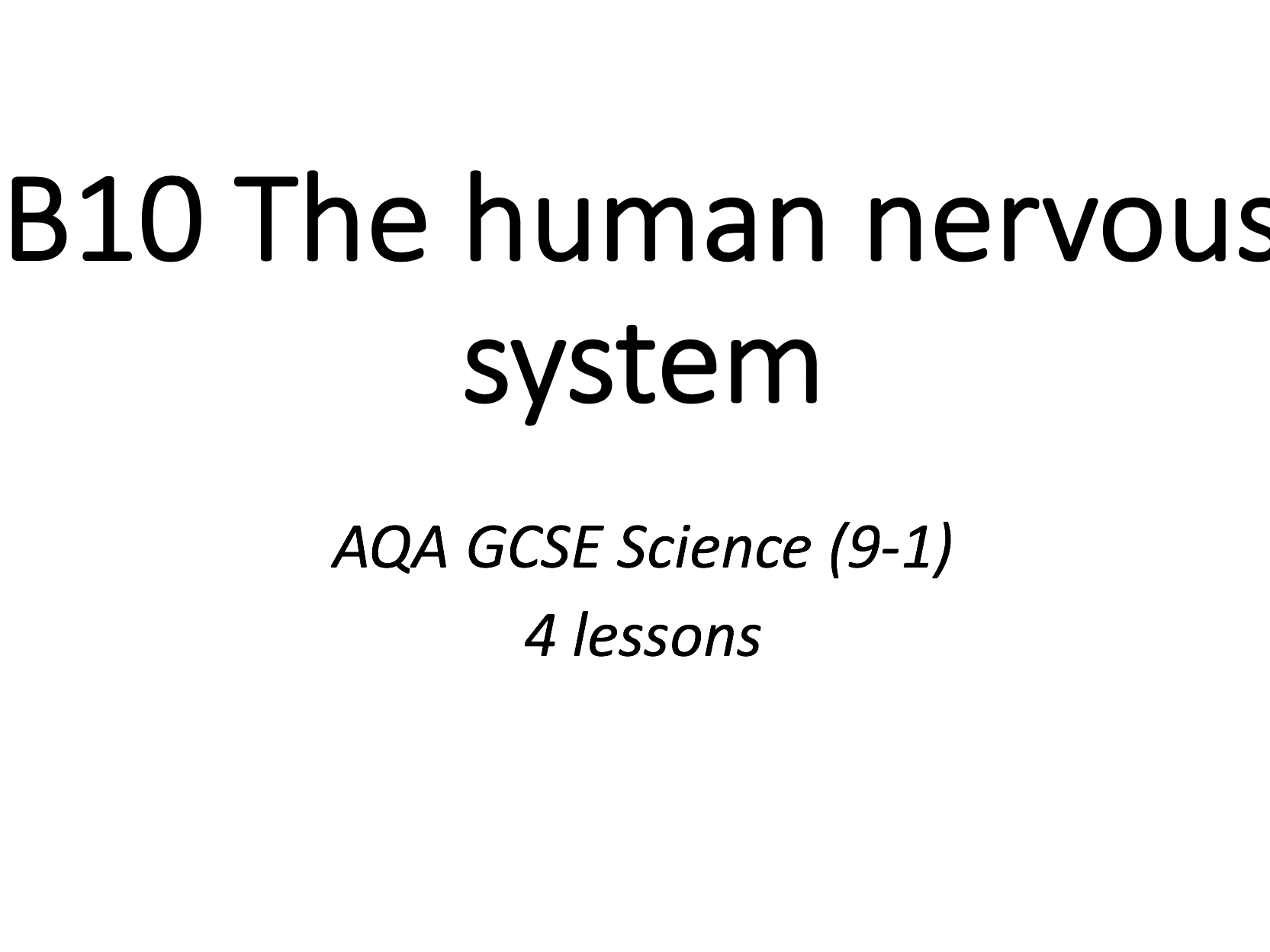 B10 The human nervous system