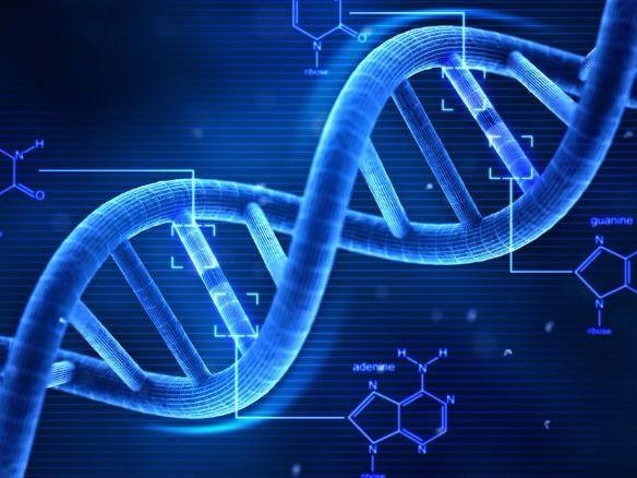AQA English Literature DNA resources