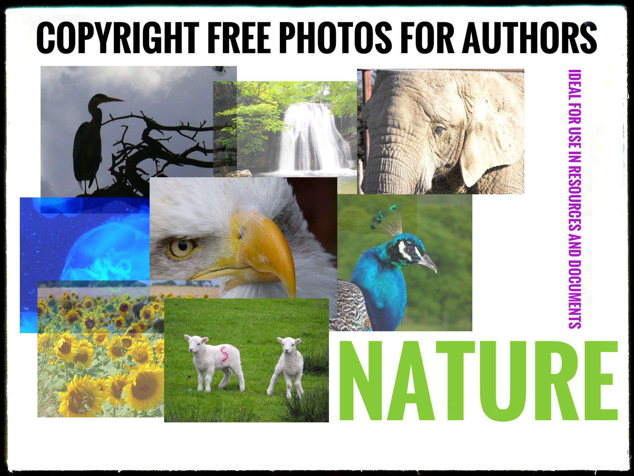 Photographs for Authors and Teachers - Nature