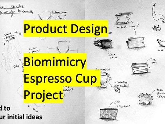 Product Design - Biomimicry Espresso Cup - Ergonomics and Initial Sketches L1 KS3 KS4