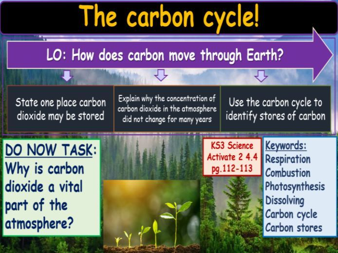 The carbon cycle KS3 Activate Science
