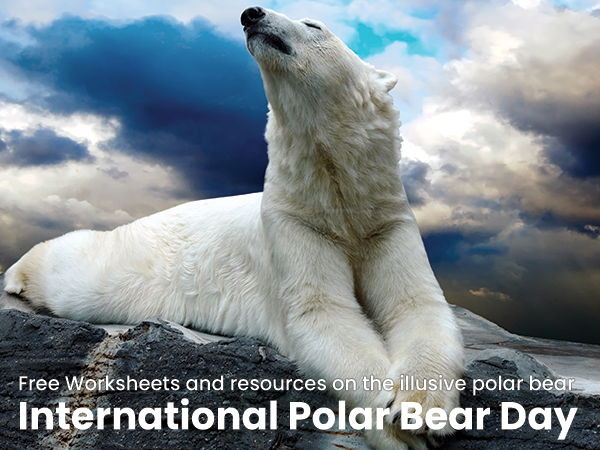 Reading Comprehension - What threats are polar bears facing?