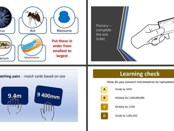 Measurements and standard form - GCSE Biology (AQA) full lesson