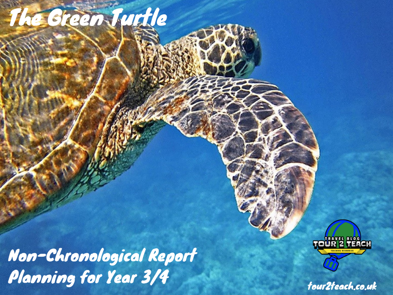 Green Turtle: Non-Chronological Report Planning for Year 3/4
