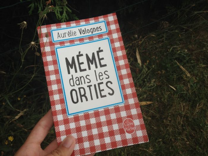 """Our of sorts"" or ""Mémé dans les orties"" Reading comprehension (Contemporary French fiction)"