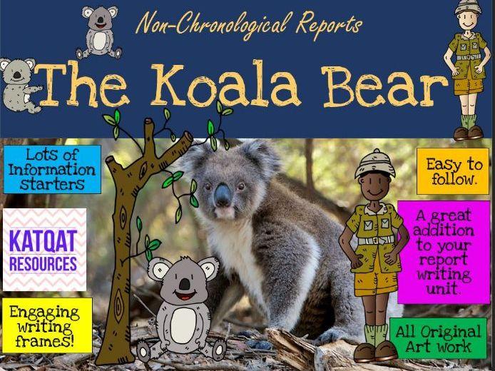 The Koala - Report Writing