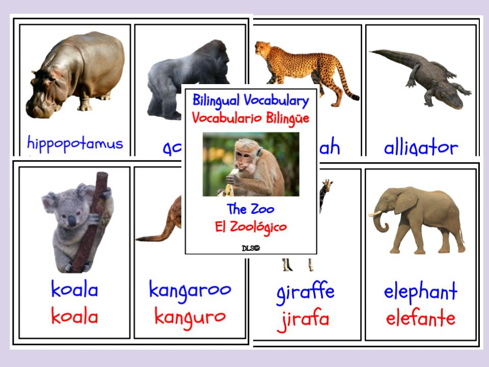 The Zoo - Bilingual Flashcard - English / Spanish