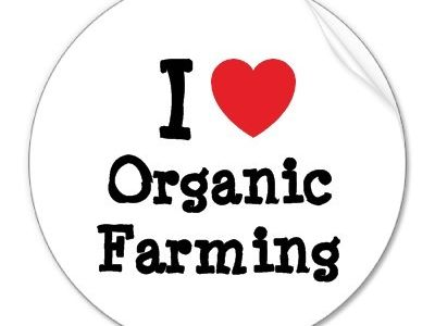 Outstanding Lesson: Organic Farming (TES Pick)