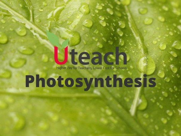 KS4  Biology   Bioenergetics -  Photosynthesis