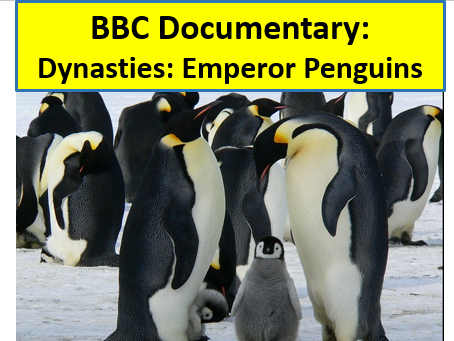 Dynasty: Emperor Penguin Documentary