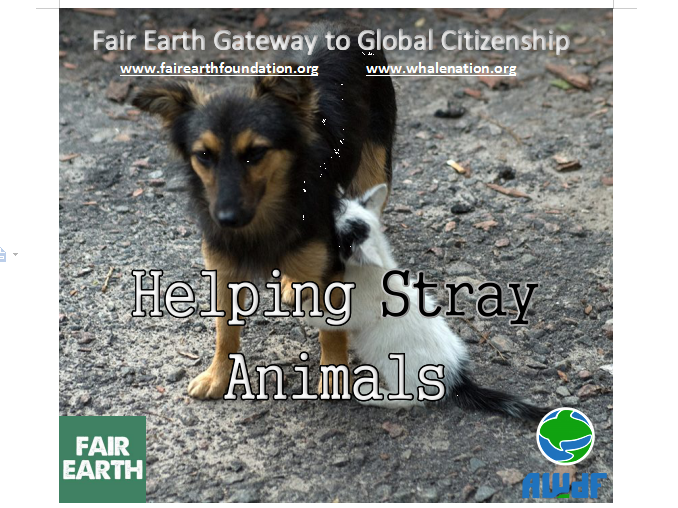 Helping Stray Animals - Fair Earth Resources