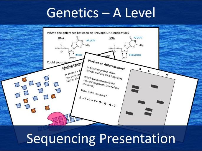 DNA Sequencing - Sanger Method - Genomes - Presentation - A Level Biology