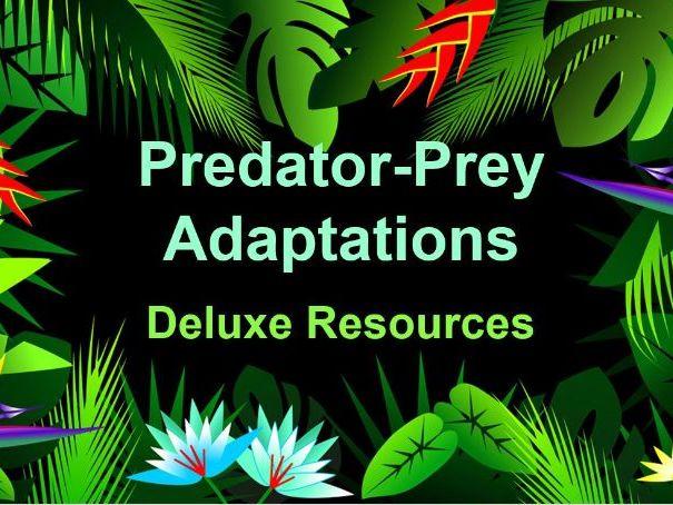 Predator-Prey Adaptations KS3 AQA (Deluxe Lesson)