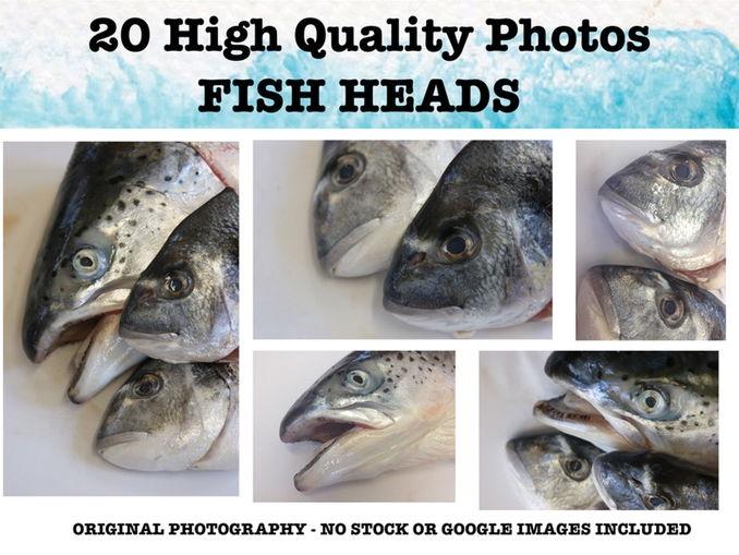 Fish -  Photo resource pack