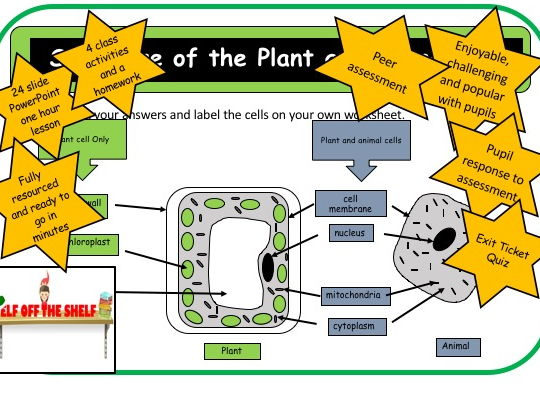 Cell Structure and the Difference Between Plant and Animal Cell KS4 Whole Lesson