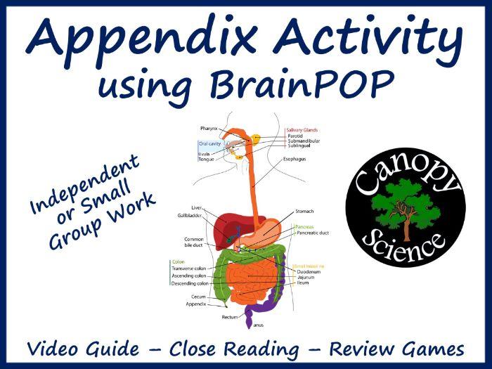 Appendix Activity using BrainPOP