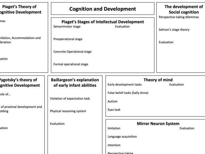 Cognition and Development Psychology Review Lesson