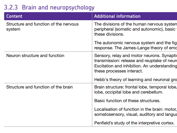BRAIN AND NEUROPSYCHOLOGY TOPIC - AQA GCSE PSYCHOLOGY (9-1)