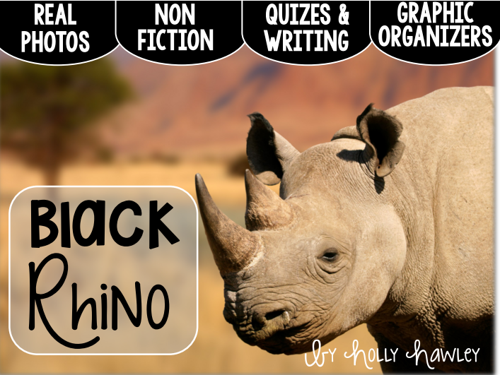 Black Rhinoceros-A Research Project-US and UK Version COMBO