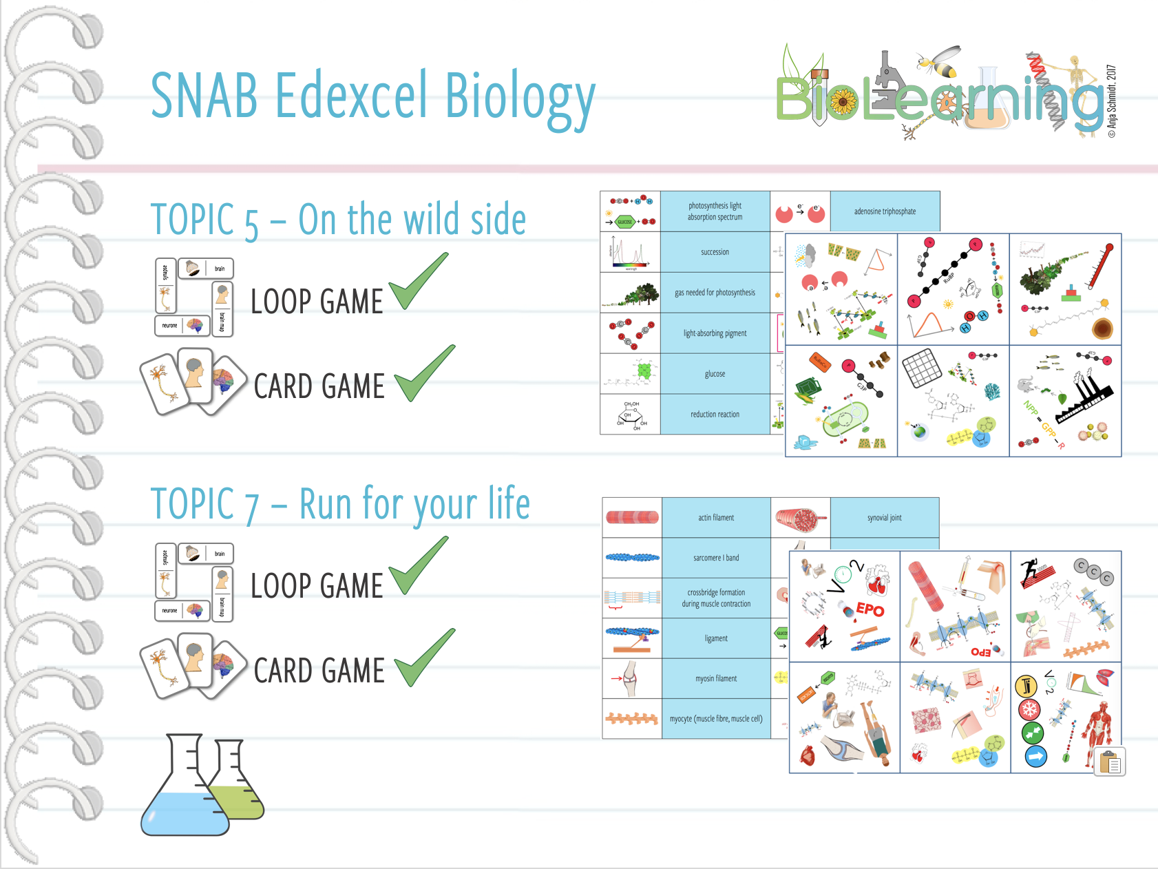 SNAB Biology Topic 5+7:  4x Activities