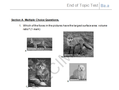 OCR Biology (Separate Science) GCSE B2.2. Challenges of size end of unit test with markscheme