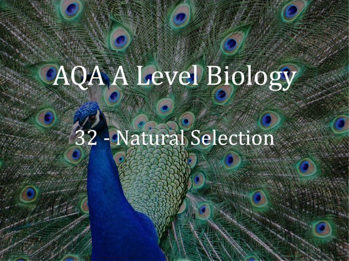 AQA A Level Biology Lecture 32 - Natural Selection