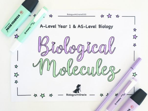 A-Level Year 1 & AS- Level Biology Biological Molecules Revision Workbook FREE SAMPLE