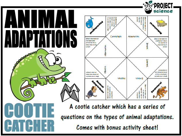 Animal Adaptations Cootie Catcher