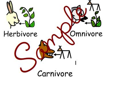 Herbivore, Carnivore and Omnivore Posters