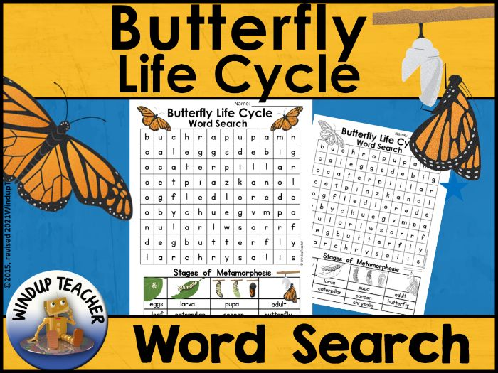 Butterfly Life Cycle Word Search Easy