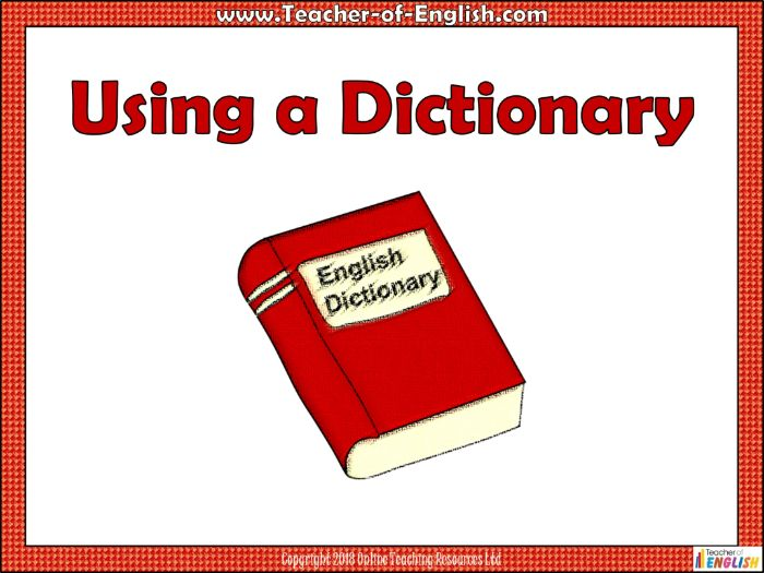 Dictionary Skills (includes a 13 slide PowerPoint with 3 worksheets)