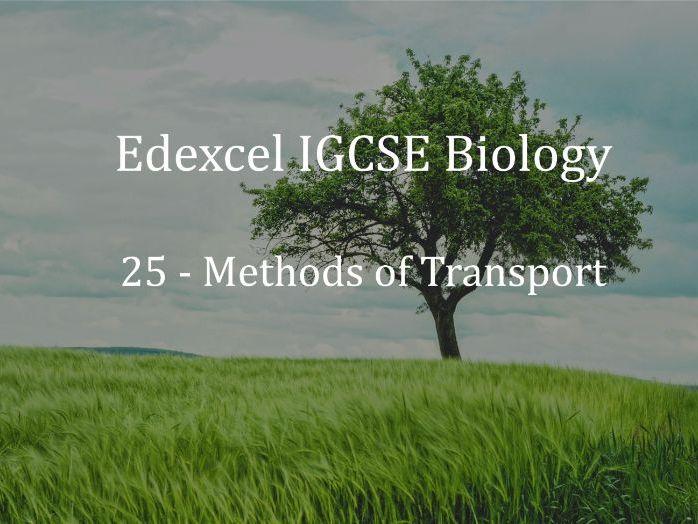 Edexcel IGCSE Biology Lecture 25  - Methods of Transport