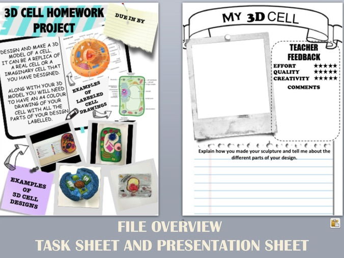3D CELL HOMEWORK PROJECT SHEETS - photos of student examples and presentation sheet included