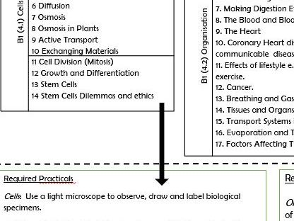 AQA Biology Triple simple 2 page Checklist with Required Practicals