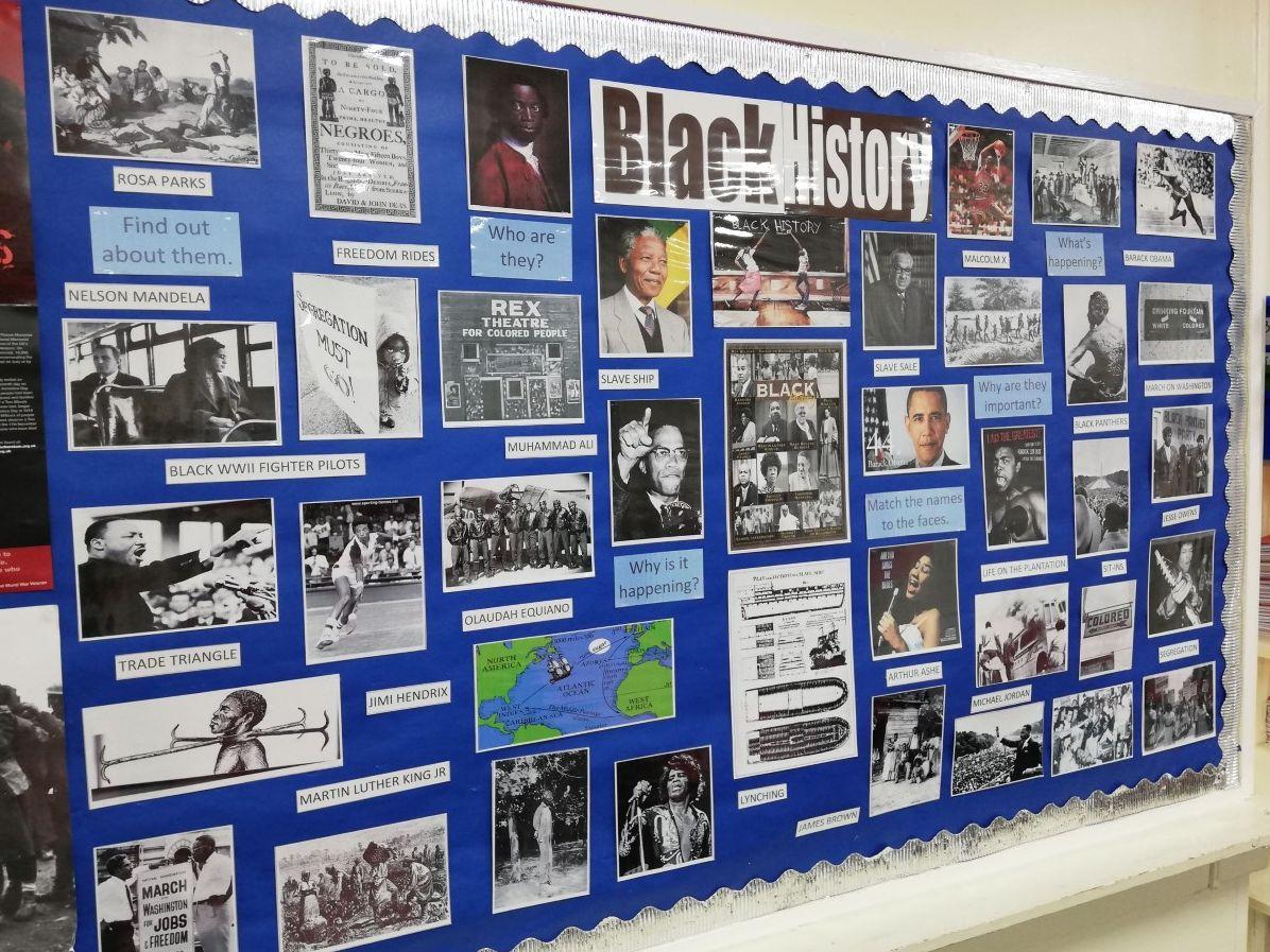History Diversity Displays