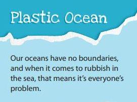 Marine Litter and Ocean Gyres