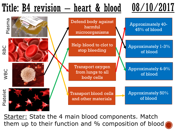The heart and blood vessels (revision) - complete lesson (GCSE 1-9)