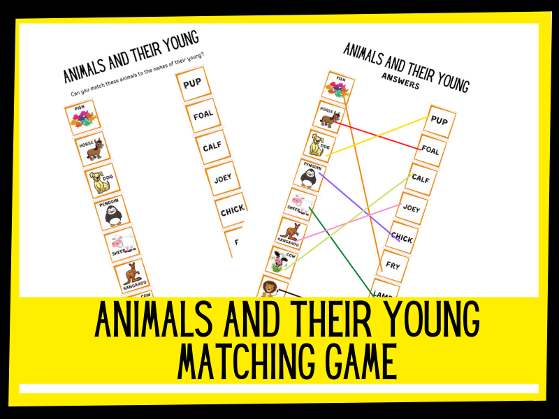 Animals and their young - matching game KS1 KS2