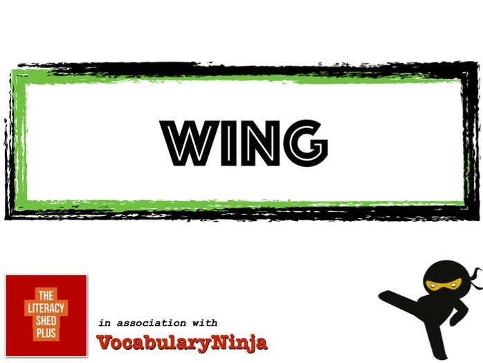 Wing Vocabulary Pack