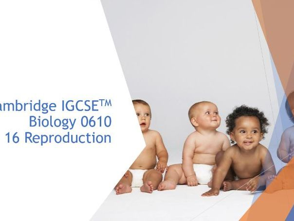 Cambridge IGCSE Biology 0610, 16 Reproduction